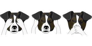 dogs, heads, funny-2945859.jpg